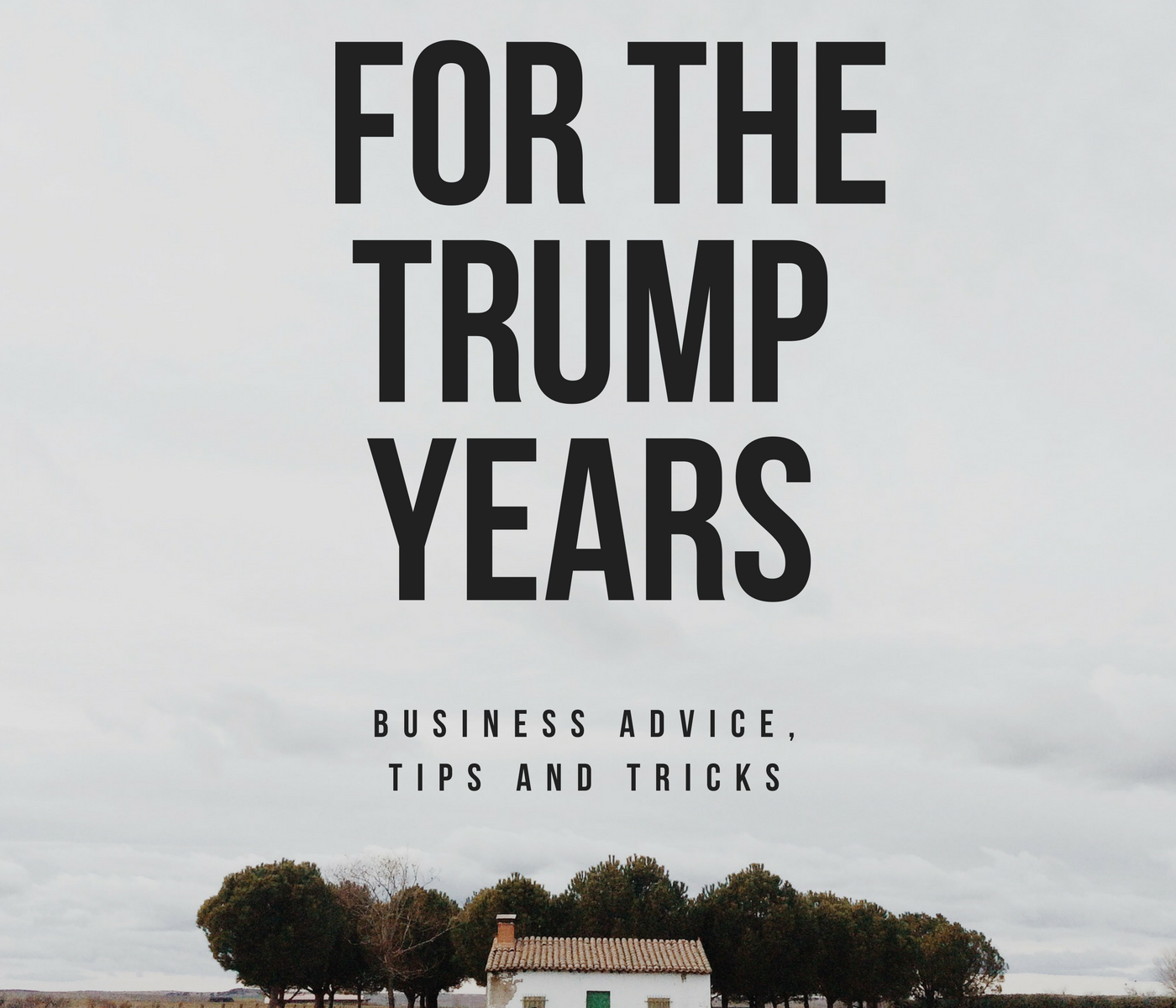 Business Advice, Tips and Tricks for the Trump Years