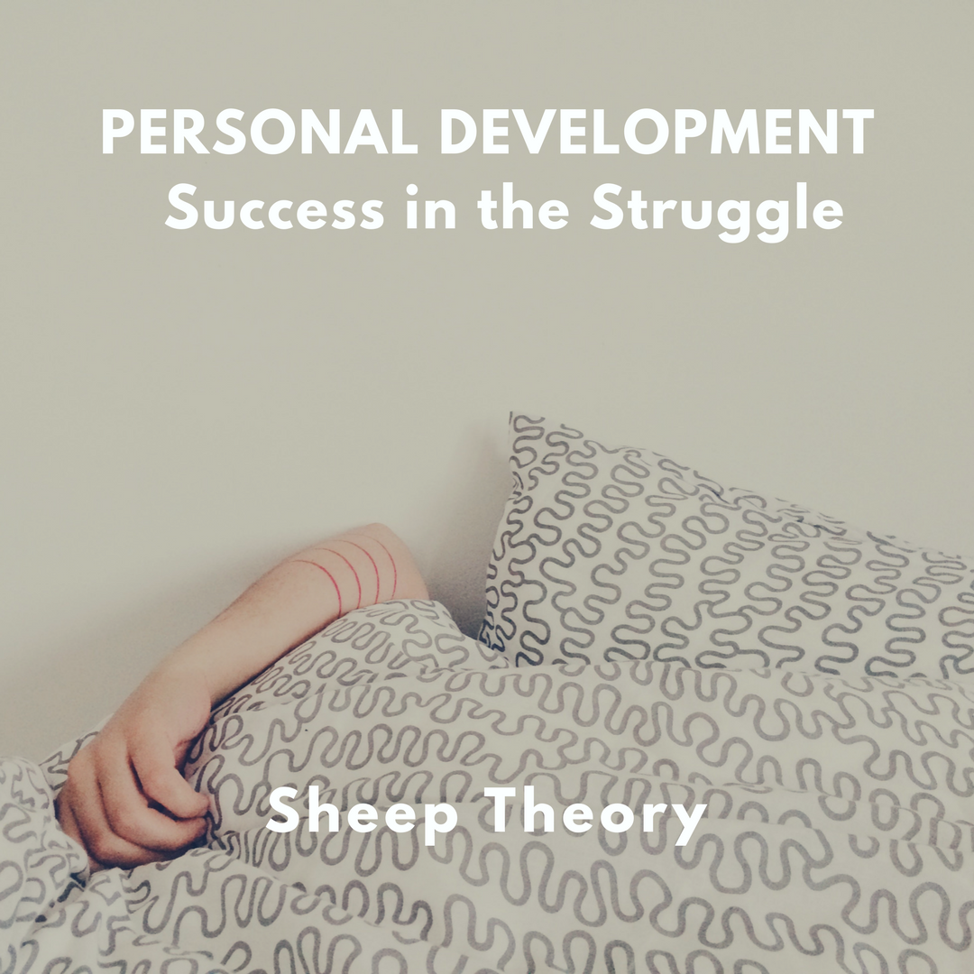 Personal Development – Success in the Struggle – Sheep Theory
