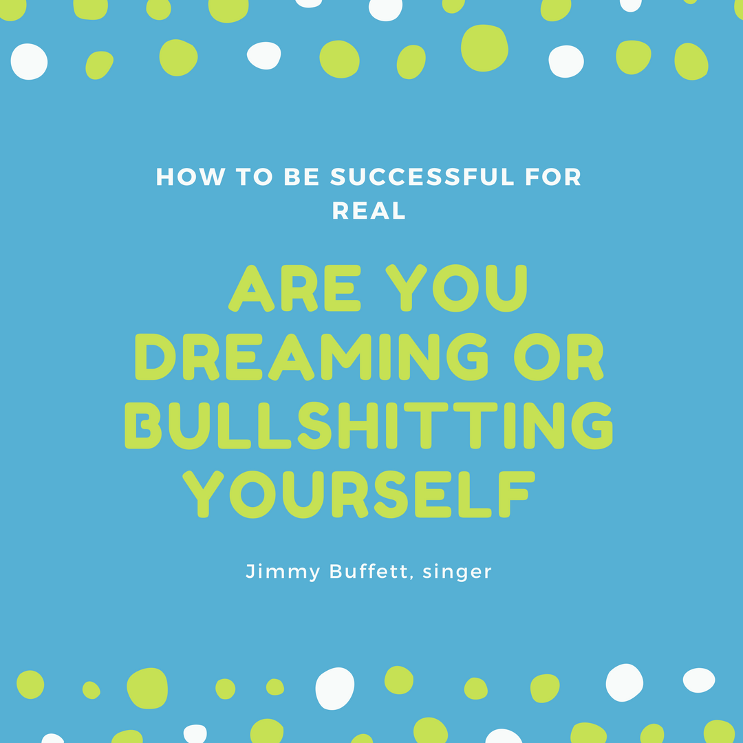 How to Be Successful for Real – Are You Dreaming or Bullshitting Yourself – A Rant