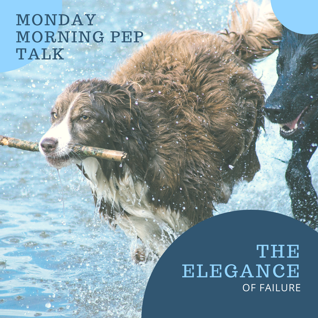 Monday Morning Pep Talk the Elegance of Failure