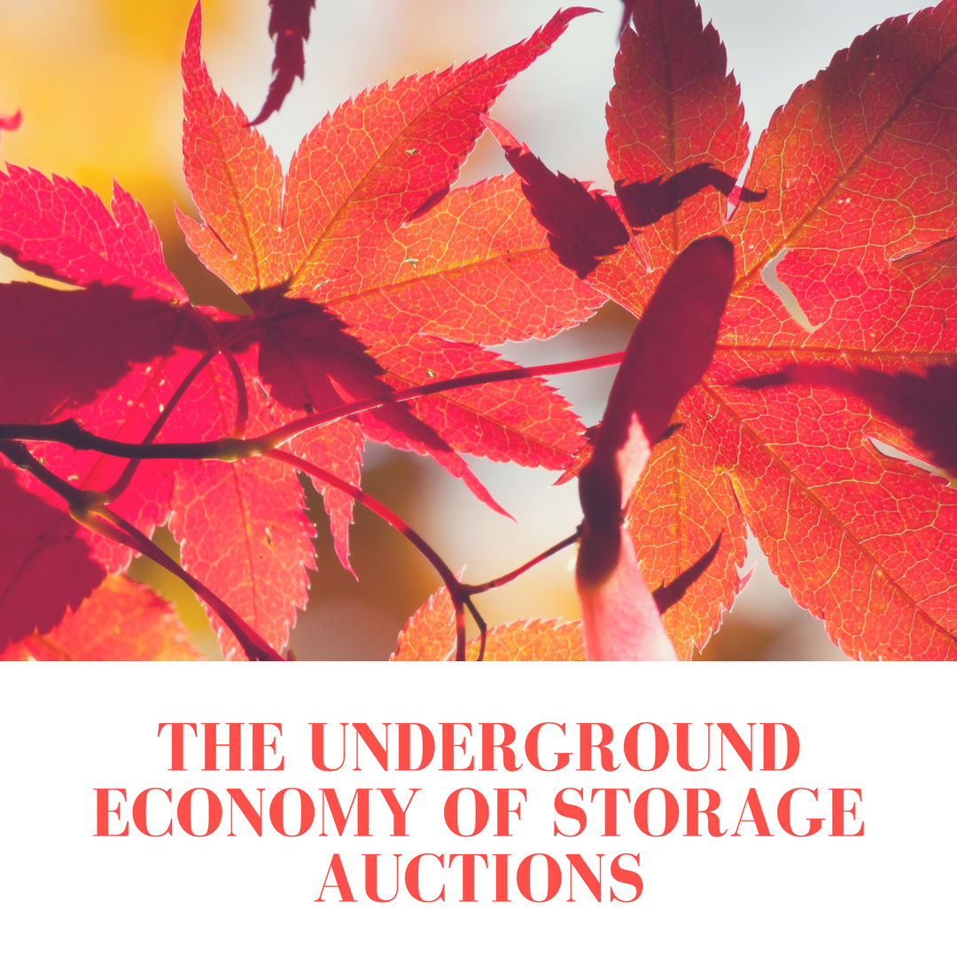 The Underground Economy of Storage Auctions