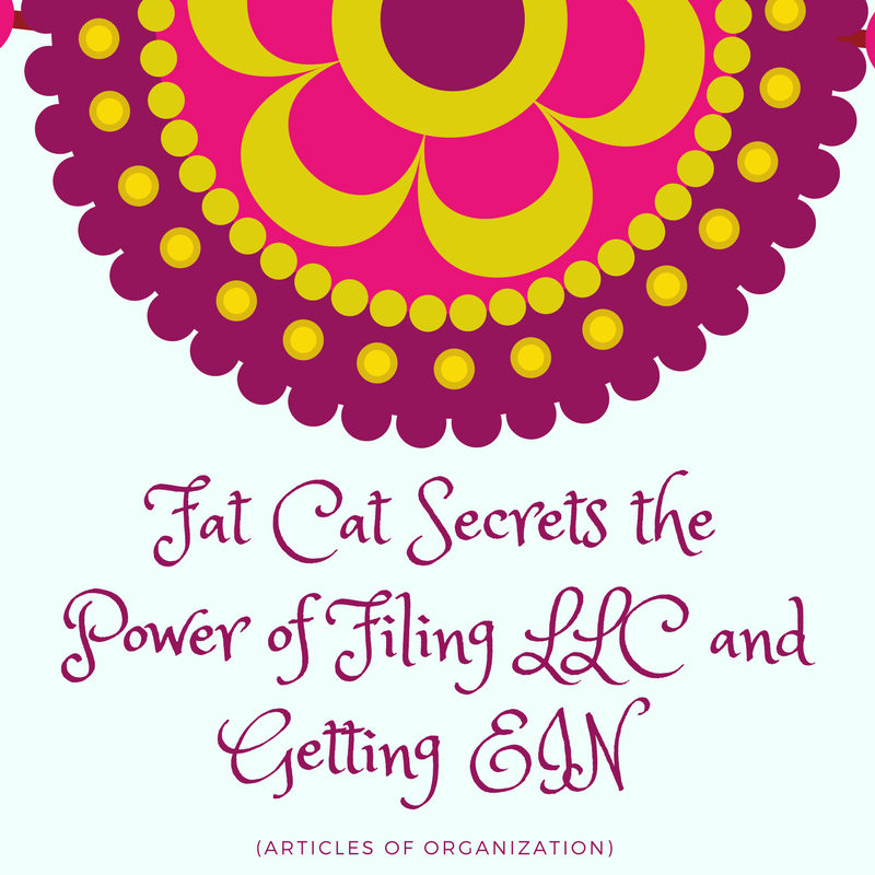Fat Cat Secrets the Power of Filing LLC and Getting EIN (Articles of Organization)
